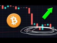 Your Altcoins: Why This Bitcoin Indicator is Critical