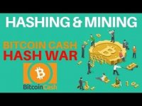 Altcoin Buzz: What Hashing is and How Mining Works - BCH Hard Fork Hash War