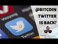 BTC Sessions: Bitcoin Twitter Handle Back In Good Hands? | CNBC's Diversification Left You REKT