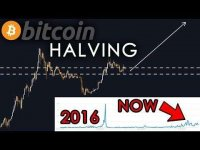sunny decree: THE BITCOIN HALVING IS NOT PRICED IN YET!!! Here's why!