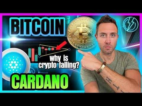 Crypto Capital Venture: BITCOIN & CARDANO PRICE FALL! (What About Crypto Bull Market?)