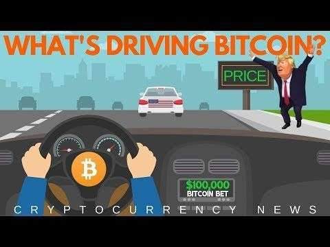 Altcoin Buzz: What is Driving Bitcoin Price? BET on BTC To $100,000 by 2020 - Crypto News