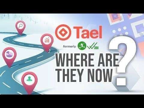 Nugget: Wabi/Tael - Where Are They Now?