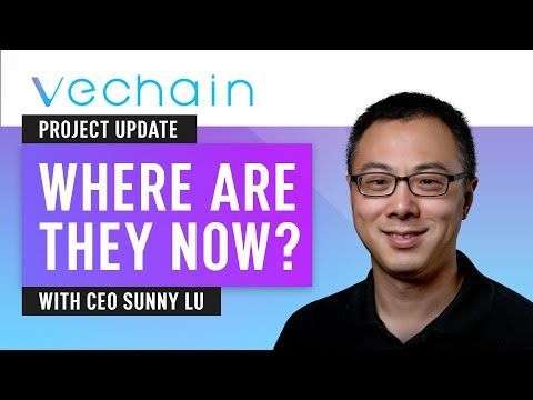Nugget: Vechain Project Update - Interview With CEO Sunny Lu