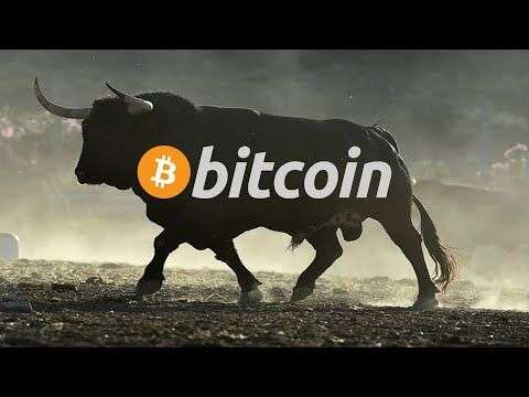 sunny decree: 3 Reasons why you should be BULLISH on BITCOIN NOW!!!