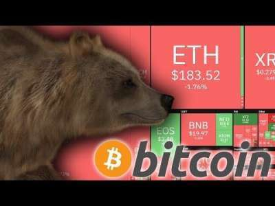 sunny decree: IS BITCOIN ENTERING ANOTHER BEARMARKET NOW???