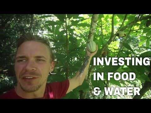 Arcane Bear: Investing In Food, Water & Crypto~ Building a Greenhouse in Costa Rica-