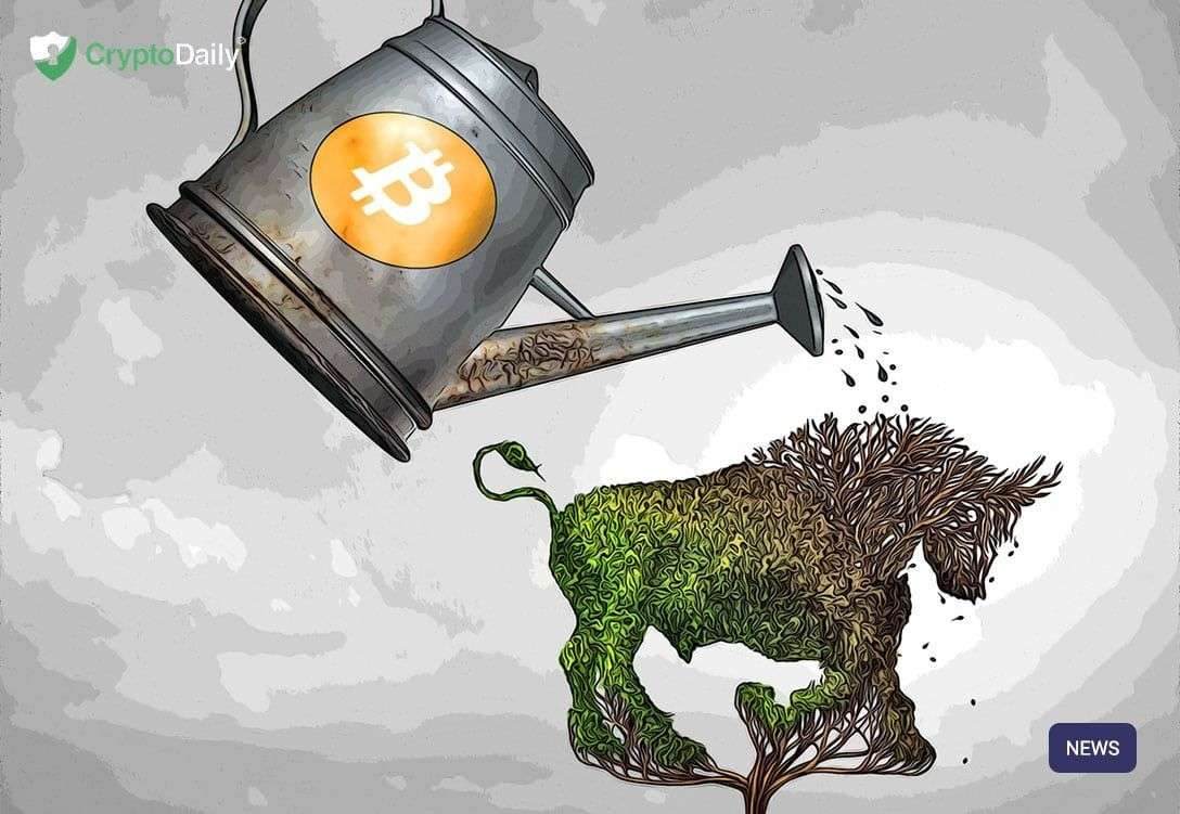 cryptodaily.co.uk: Tom Lee: Bitcoin Bull Run In August
